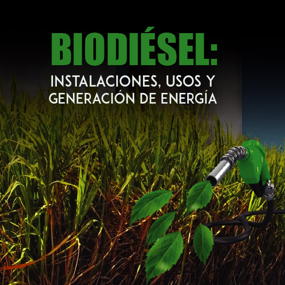 Biodiésel: Instalaciones, Usos y Generación de Energía
