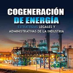 Cogeneración de Energía: Estrategias Legales y Administrativas de la Industria