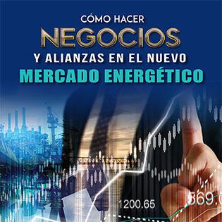 Cómo Hacer Negocios y Alianzas en el Nuevo Mercado Energético