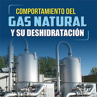 Comportamiento del Gas Natural  y su Deshidratación