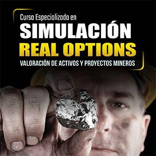 Curso especializado en simulación por real options, valoración de activos y proyectos mineros