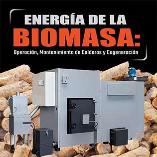 Energía de la biomasa: Operación, mantenimiento de calderas y cogeneración.