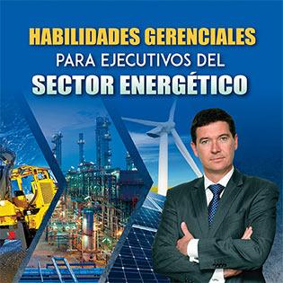 Habilidades gerenciales para ejecutivos del sector energético