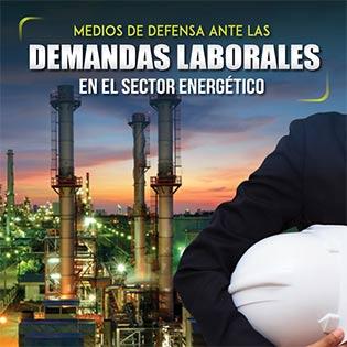 Medios de defensa ante las demandas laborales en el sector energético