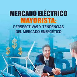 Mercado Eléctrico Mayorista: Perspectivas y Tendencias del Mercado Energético