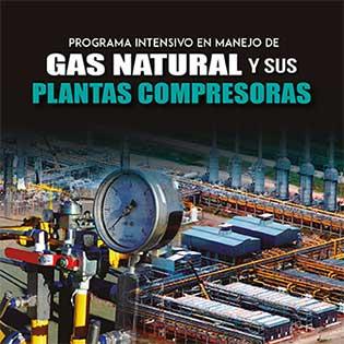 Programa intensivo en manejo de gas natural y sus plantas compresoras