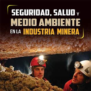 Seguridad, salud y medio ambiente en la industria minera