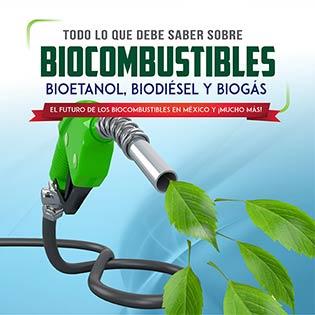 Todo lo que debe saber sobre biocombustibles. Bioetanol, biodiesel y biogás