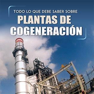 Todo lo que debe saber sobre plantas de cogeneración
