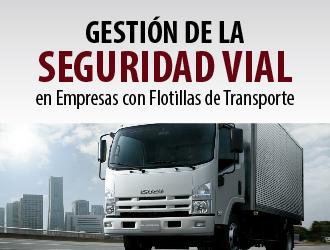 Gestión de la Seguridad Vial en Empresas con Flotillas de Transporte